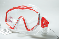 Scuba Diving Face Mask-M21